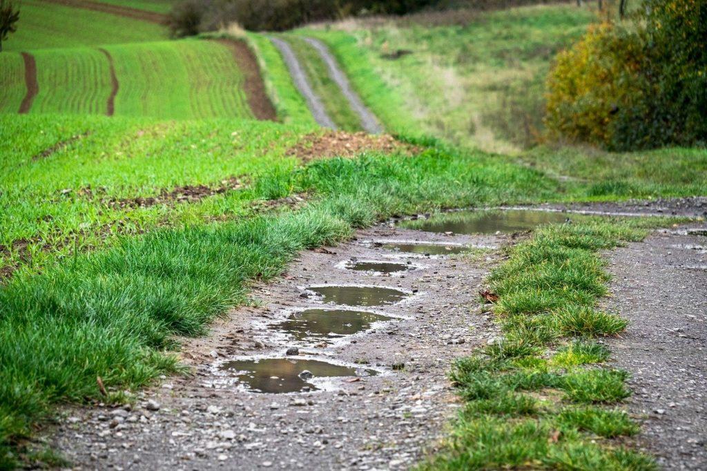 Felder bei Regen
