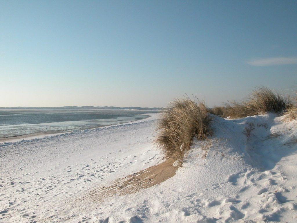 Strandsuche in Schleswig Holstein im Sand